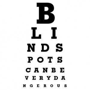 blindpsot