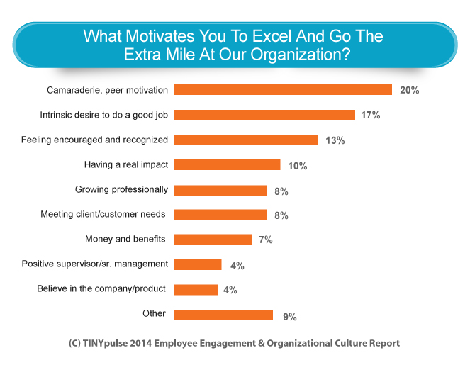 Bar Graph What Motivates Employees To Go The Extra Mile