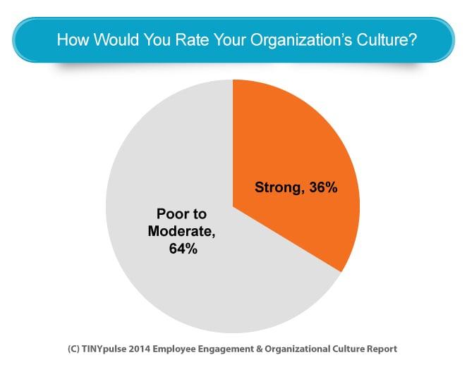 Pie Chart Organization Culture