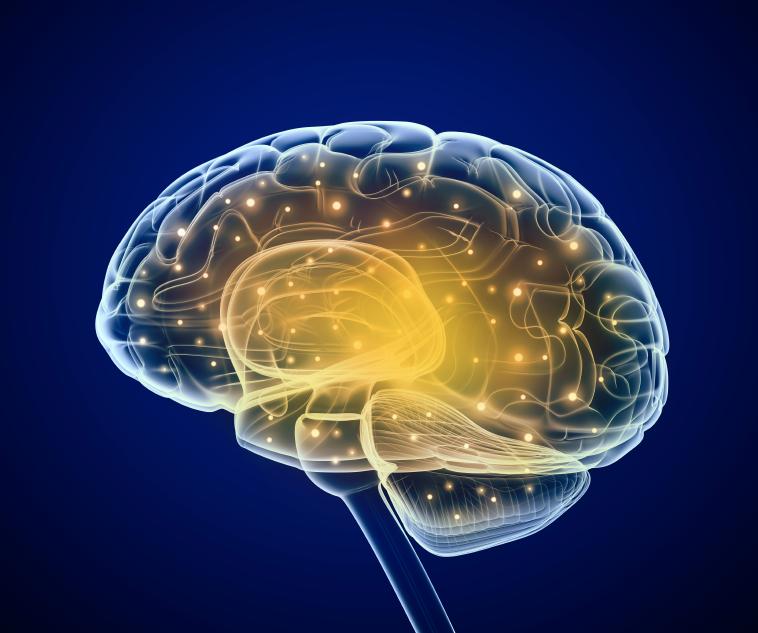 How To Instill Organizational Values Based On Neuroscience