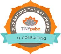 Raising the Bar - IT Consulting