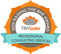 Raising the Bar - Professional Consulting Services