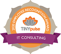 Recognition - IT Consulting