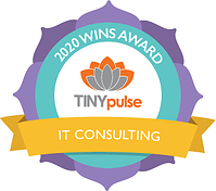 Wins - IT Consulting
