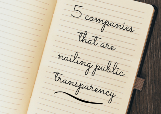 5 Companies That Are Nailing Public Transparency by TINYpulse
