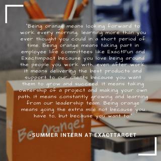 Summer Intern Quote