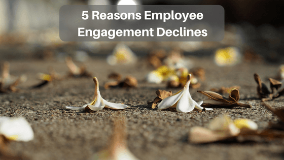 5 Common Reasons Employee Engagement Declines