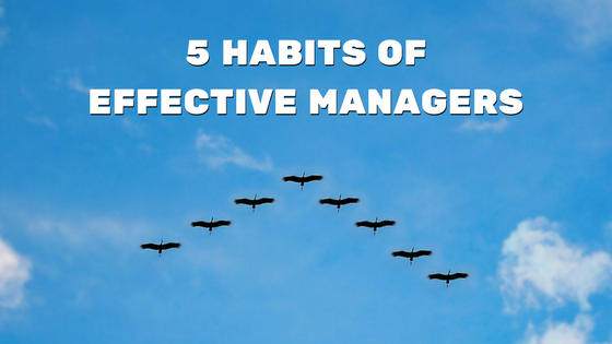 5-habits-of-effective-managers.png