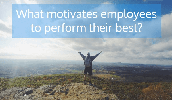 What-motivates-employees-to-perform-their-best.png