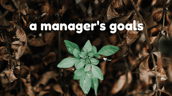 A Managers Goals