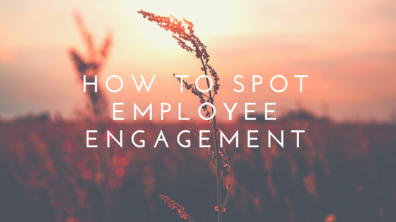 How to spot employee engagement
