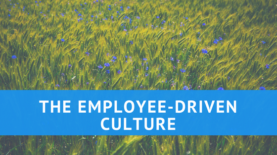 Employee-driven work culture