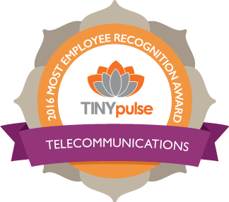 recognition_telecomunications-1.png