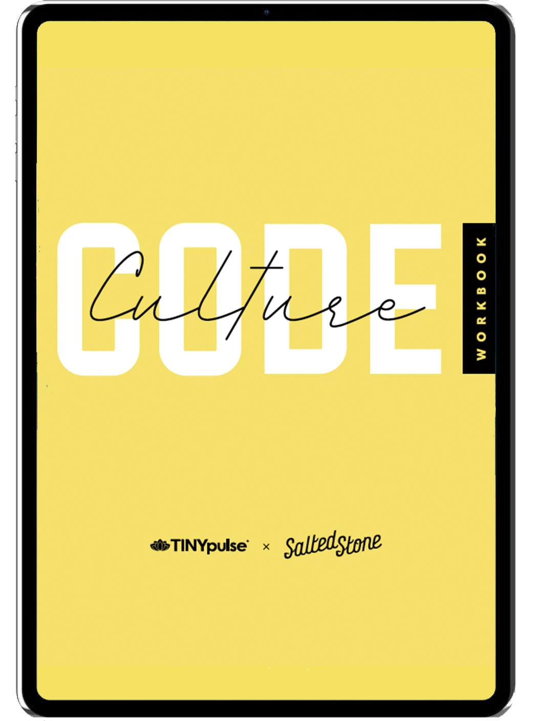 Culture Code Workbook Slider 1