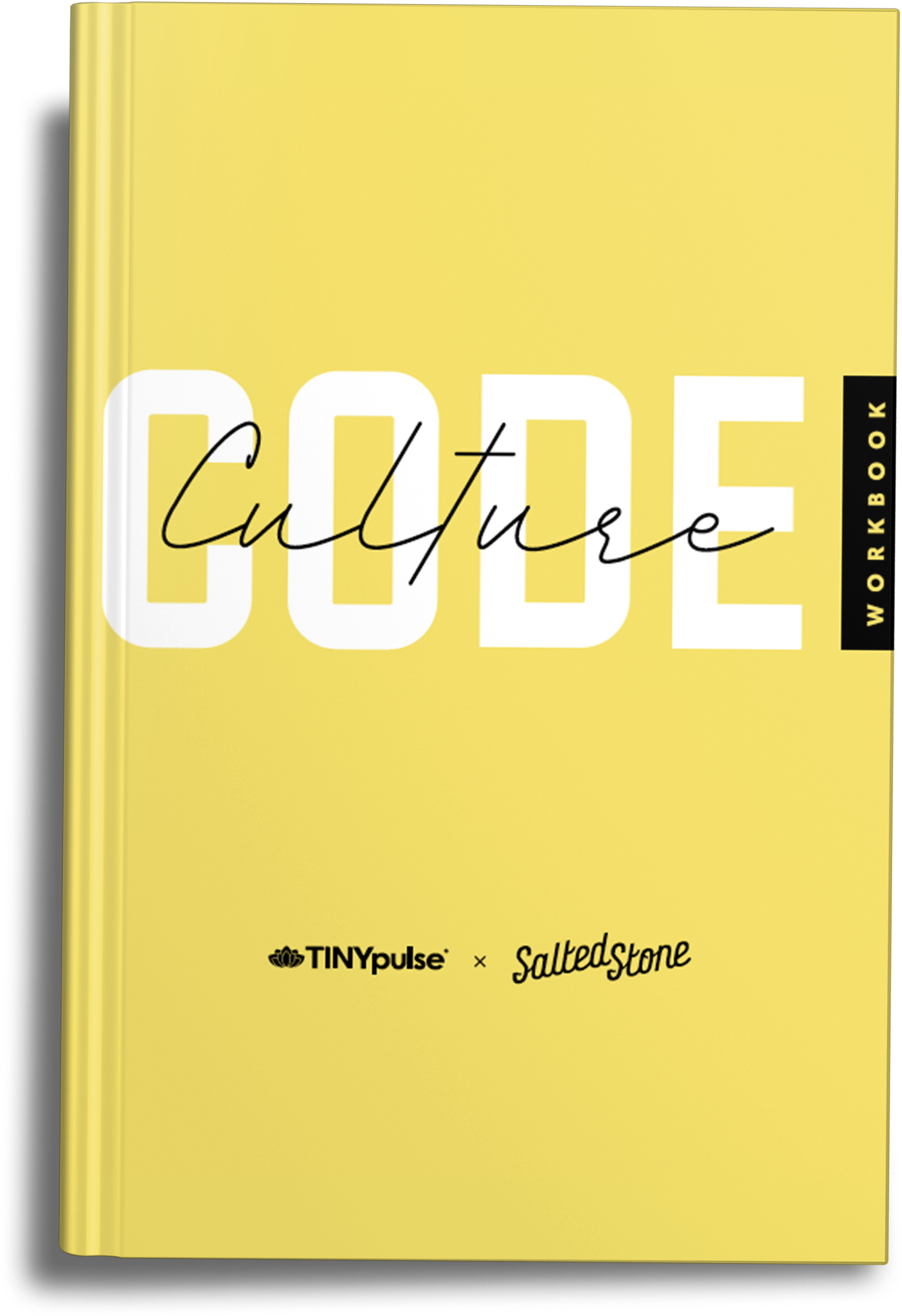Culture Code Workbook mockup 2-2