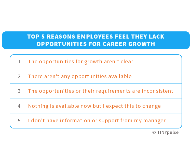 IT employees' obstacles to professional development | TINYpulse
