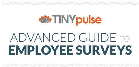Advanced Guide to Employee Surveys
